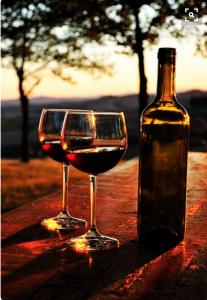 Vinho pode ser bebido por diabéticos, pois possui uma quantidade pequena de carboidratos!